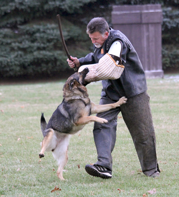 Preserving the Fundamentals of Schutzhund